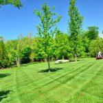 Nasveti za ustrezno košenje trave